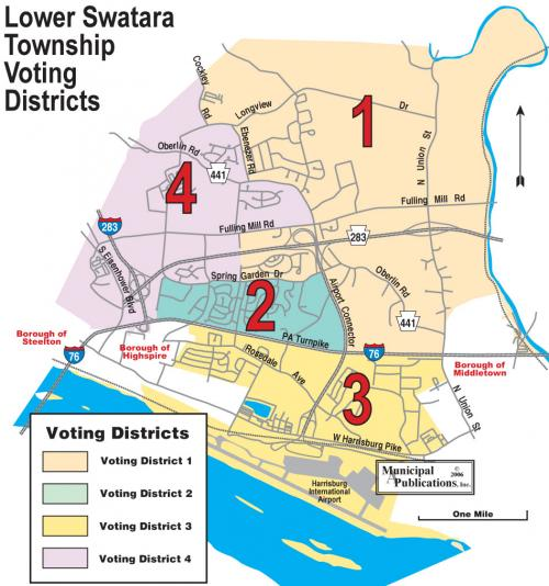 Lower Swatara Township Voting Districts